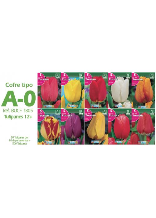 COFRE TIPO A-O -TULIPANES-500 BULBOS