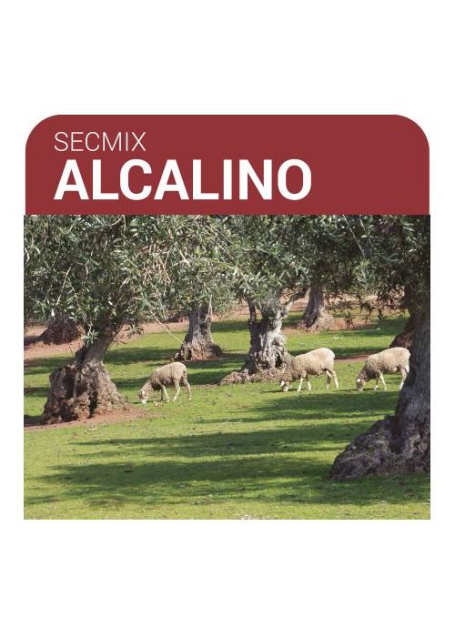 SEMILLA PRADERA SECMIX ALCALINO