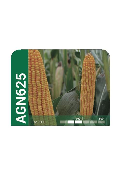 AGN 625