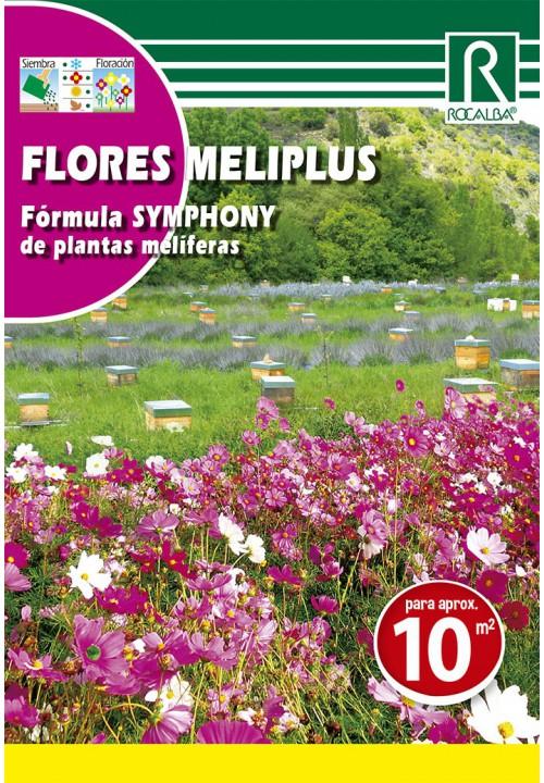 FLORES MELIPLUS