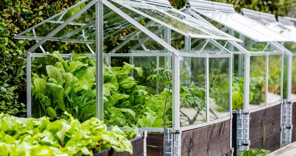 instalar-invernadero-huerto