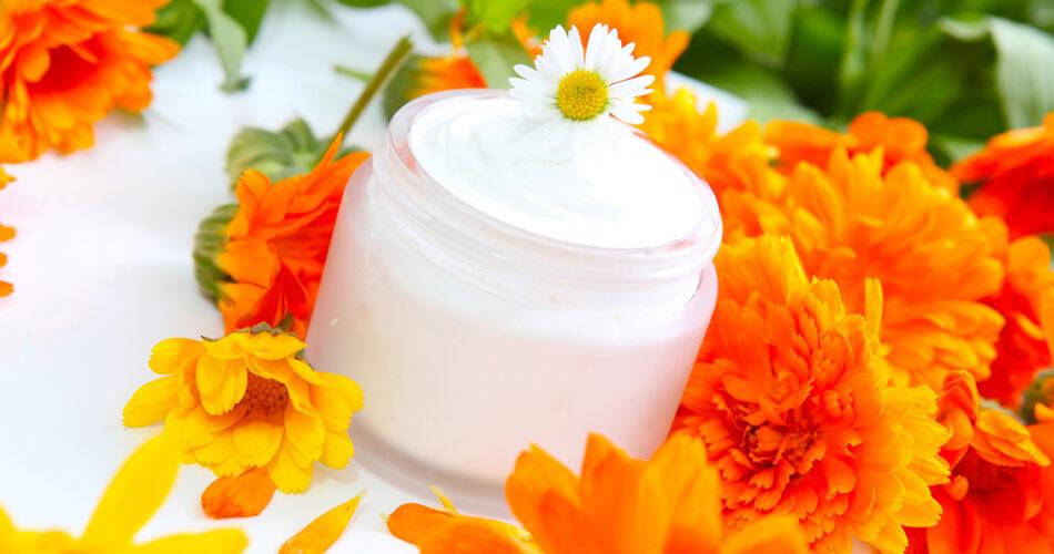 plantas-utilizadas-cosmetica-natural