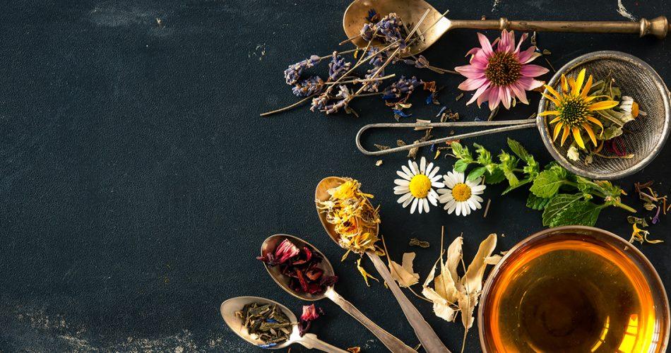 resfriado-congestion-plantas-medicinales