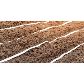 Rubans et Disques de semis