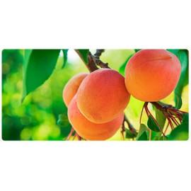 Fruteiras anãs